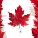 Viaggio in Canada scegli il fai da te o il viaggio organizzato